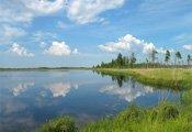 Отдых в Ленинградской области